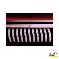 KapegoLED Flexibler LED Stripe, 5050-96-24V-RGB+6200K-5m-Silikon