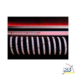 KapegoLED Flexibler LED Strip, 5050-60-24V-RGB+3000K-5m